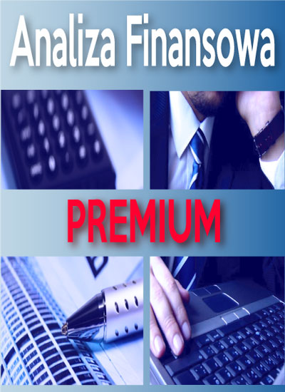 program-analiza-finansowa-premium