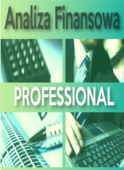 program-analiza-finansowa-professional